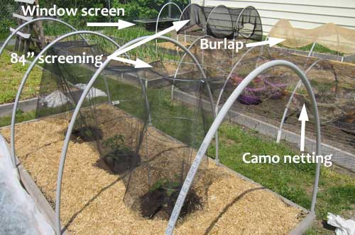 Vegetable Garden Shade Cloth Ideas